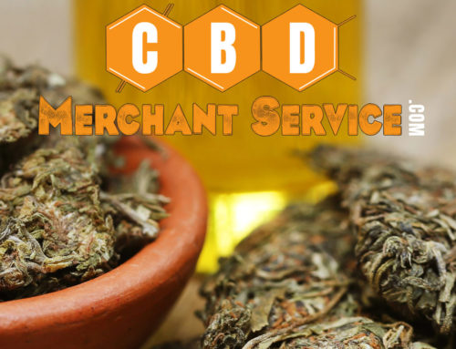 How to choose a CBD merchant service provider?